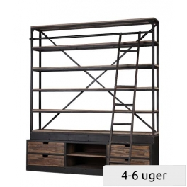 Shelving with ladder