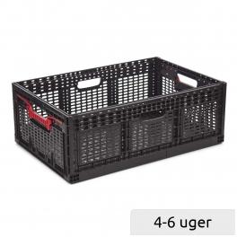 Foldable crate 46 L